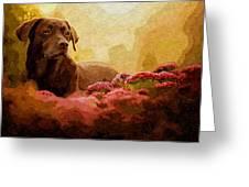 The Labrador Greeting Card