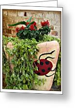 the Ladybug Greeting Card