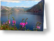 The Landscape Of The Bay Of Kotor In Montenegro. Greeting Card