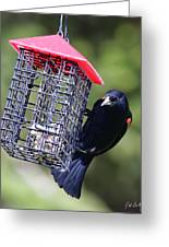 The Last Of The Suet Greeting Card