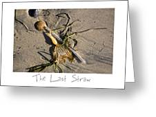 The Last Straw Greeting Card by Peter Tellone