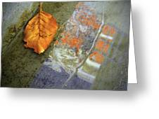 The Leaf And The Reflections Greeting Card