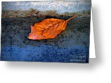 The Leaf On The Stairs Greeting Card