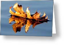 The Leaf Greeting Card
