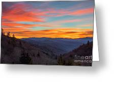 The Leaves Are Gone But The Beauty Is There. Greeting Card