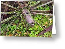 The Lichen Wheel Greeting Card