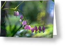 The Light In Our Bleeding Hearts Greeting Card