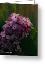 The Lilac Greeting Card