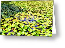 The Lily Pond #2 Greeting Card