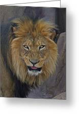 The Lion Dry Brushed Greeting Card