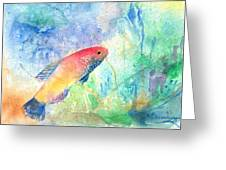 The Little Fish Greeting Card