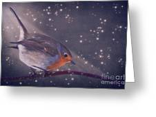 The Little Robin At The Night Greeting Card