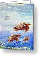 The Loggerheads Catch The Currents Greeting Card