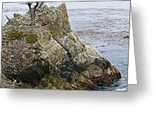 The Lone Cypress - California Greeting Card by Brendan Reals
