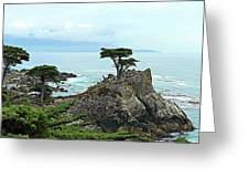 The Lone Cypress Stands Alone Greeting Card