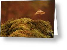 The Lonely Mushroom Greeting Card