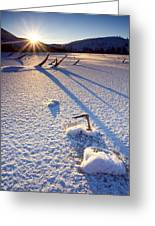 The Long Shadows Of Winter Greeting Card