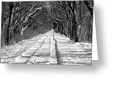 The Long Winter Walk Greeting Card