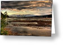 The Lower Pack River Idaho Greeting Card