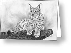 The Lynx 2017 Version Greeting Card