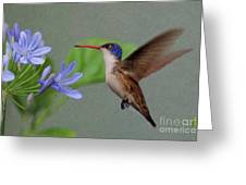 The Magic Garden Greeting Card