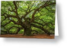 The Magical Angel Oak Tree Panorama  Greeting Card