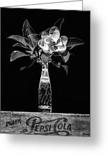 The Magnolia And Pepsi Still Life Black And White Greeting Card