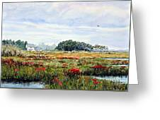 The Marsh In Bloom Greeting Card