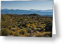 The Mcdowell Mountains Greeting Card