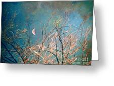 The Messy House Of The Moon Greeting Card