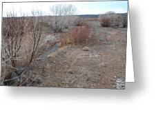 The Mighty Santa Fe River Greeting Card
