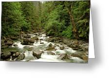 The Miller River  Greeting Card