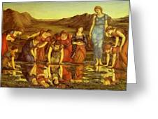 The Mirror Of Venus  Greeting Card