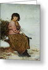 The Mistletoe Gatherer Greeting Card