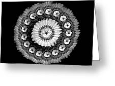 The Monochromatic Beadwork And Feather Of Flower Greeting Card by Jacqueline Migell
