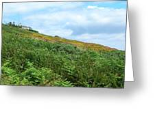 The Moor At Howth Greeting Card