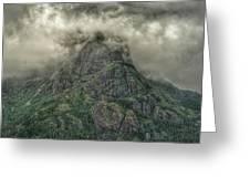 The Mountains Of Alaska  Greeting Card