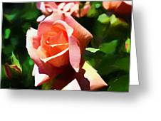 The Name Of A Rose Is Beauty Greeting Card