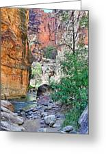 The Narrows Of The Virgin River  Greeting Card