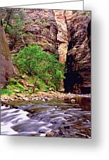 The Narrows Zion Greeting Card