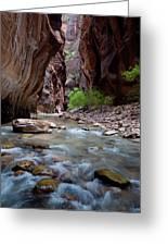 The Narrows, Zion National Park, Utah Greeting Card