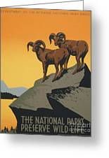 The National Parks Preserve Wild Life Vintage Travel Poster Greeting Card