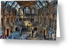 The Natural History Museum London Uk Greeting Card