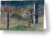 The Neighbor's Gate Greeting Card