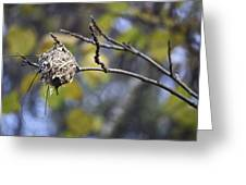 The Nest 2 Greeting Card