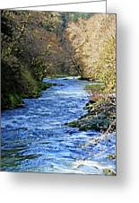 The Nestucca River Greeting Card