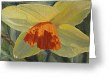 The Nodding Daffodil Greeting Card