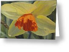 The Nodding Daffodil Greeting Card