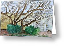 The Old Apricot Tree Greeting Card