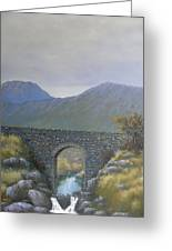 The Old Bridge At Connor Pass Greeting Card